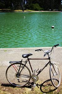 Mein Fahrrad!